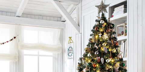 Interior design, Room, Property, Christmas decoration, Christmas tree, Home, Interior design, Christmas ornament, Holiday, Woody plant,