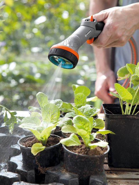 Flowerpot, Plant, Leaf, Soil, Drill, Tool, Herb, Houseplant, Annual plant, Interior design,