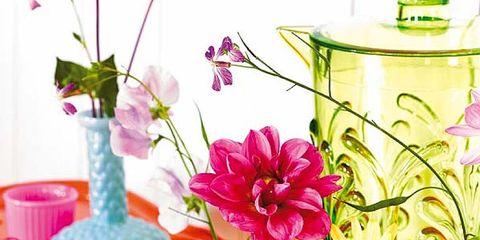 Petal, Flower, Pink, Interior design, Artifact, Flowering plant, Serveware, Purple, Still life photography, Centrepiece,