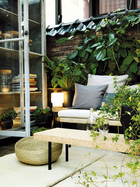 Furniture, Patio, Courtyard, Botany, Chair, Houseplant, Interior design, Room, Garden, Architecture,