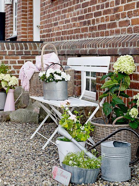 Flowerpot, Plant, Brick, Brickwork, Houseplant, Herb, Annual plant, Outdoor table, Building material, Backyard,