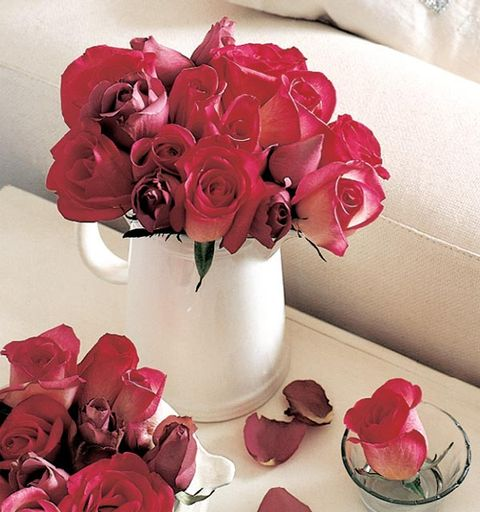 Flower, Pink, Garden roses, Cut flowers, Red, Rose, Petal, Bouquet, Artificial flower, Plant,