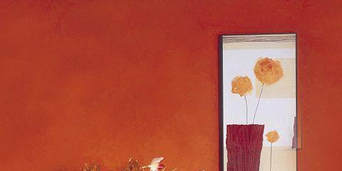 Room, Interior design, Wall, Interior design, Orange, Vase, Cabinetry, Artifact, Bouquet, Flower Arranging,