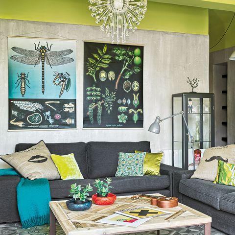 Room, Green, Invertebrate, Interior design, Insect, Living room, Wall, Furniture, Arthropod, Table,
