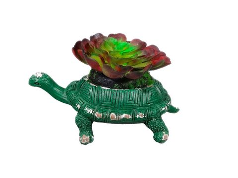 Green, Toy, Turtle, Tortoise, Animal figure, Figurine, Reptile, Natural material, Working animal, Sea turtle,