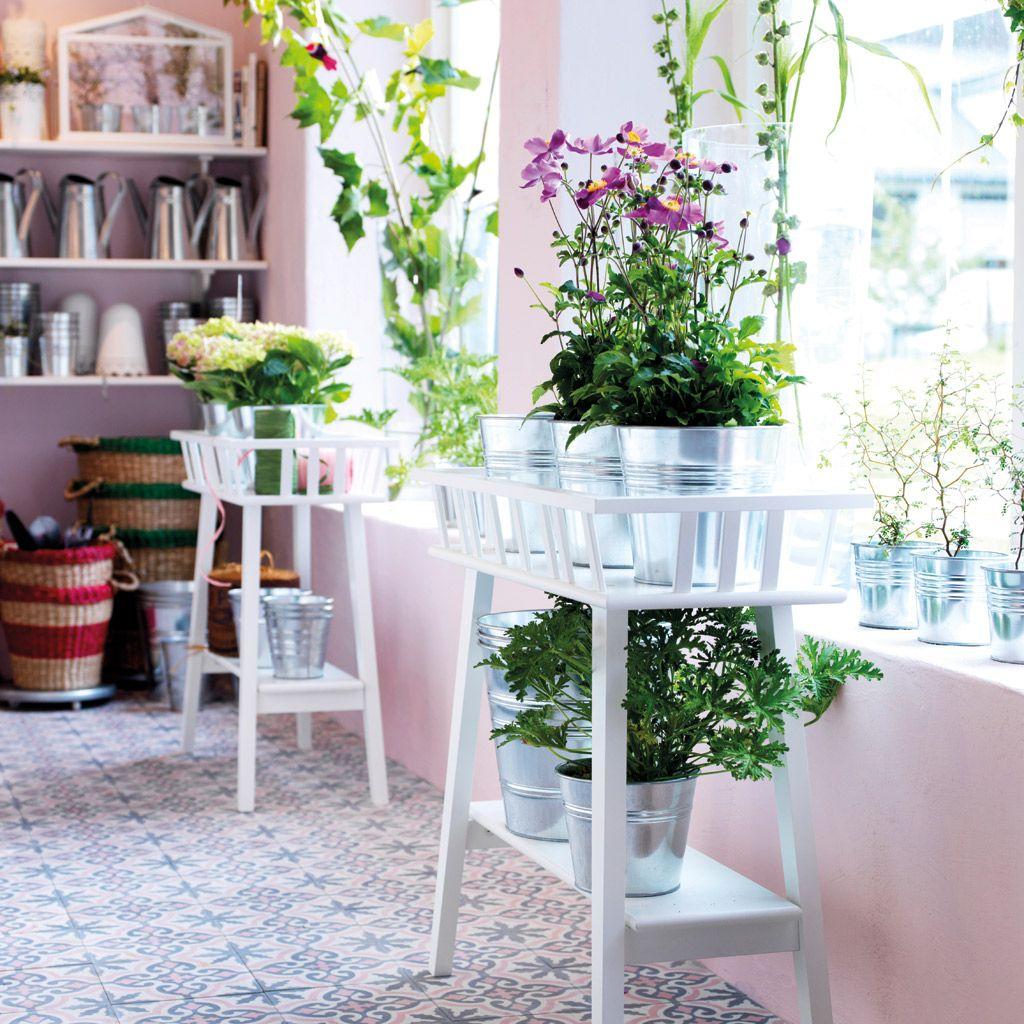 Te quiero, verde... Cómo decorar tu casa con plantas de interior