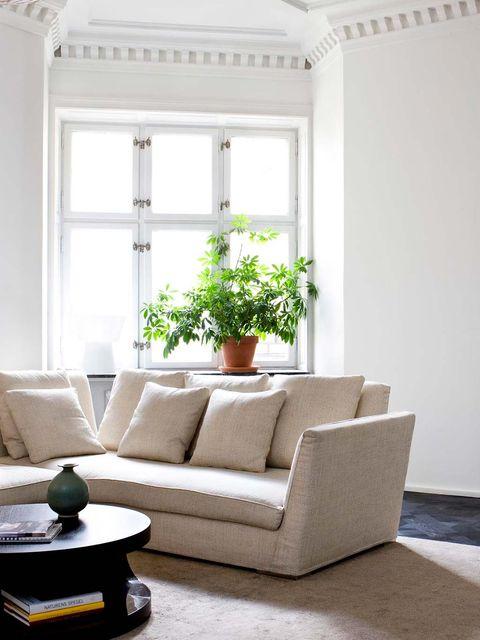 Interior design, Room, Floor, Window, Flooring, Wall, Living room, White, Furniture, Home,