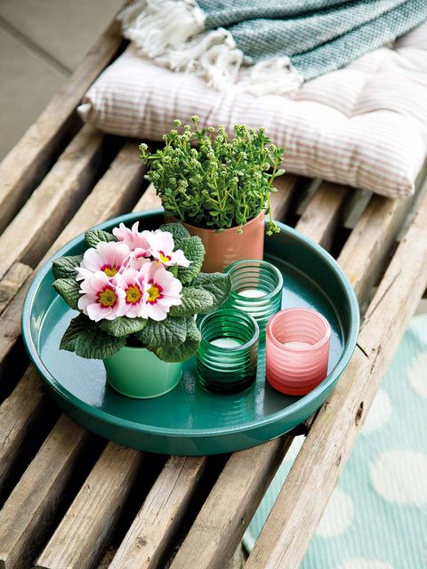 Serveware, Dishware, Flowerpot, Teal, Home accessories, Interior design, Turquoise, Pottery, earthenware, Herb,