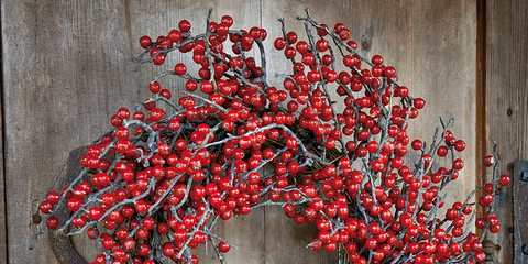 Wreath, Red, Christmas decoration, Carmine, Coquelicot, Heart, Natural material, Still life photography, Symbol,
