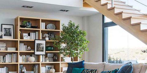 Blue, Wood, Interior design, Green, Room, Shelf, Home, Furniture, Living room, Wall,