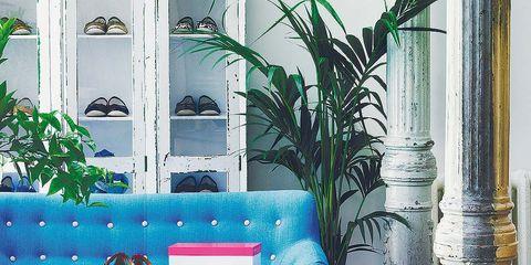 Blue, Interior design, Room, Wall, Living room, Furniture, Interior design, Couch, Home, Majorelle blue,