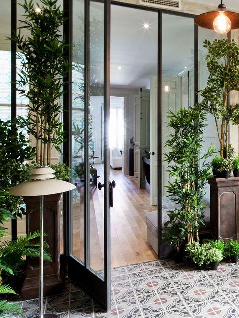 Lighting, Plant, Flooring, Floor, Glass, Fixture, Light fixture, Tile, Interior design, Door,