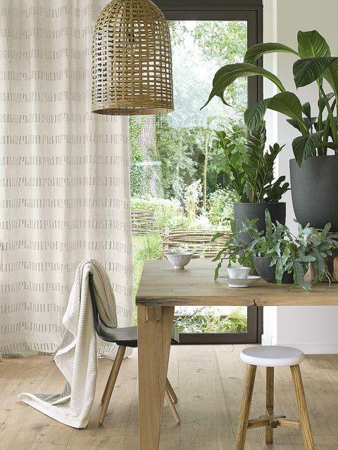 Plant, Room, Interior design, Table, Flowerpot, Interior design, Lampshade, Home accessories, Houseplant, Light fixture,