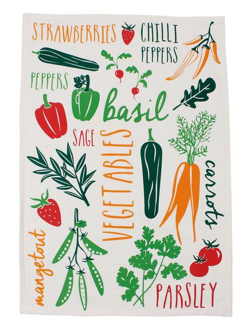 Botany, Flowering plant, Produce, Ingredient, Root vegetable, Natural foods, Illustration, Carrot, Vegetable, wild carrot,