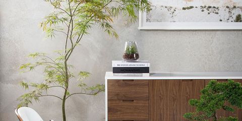 Furniture, Room, Table, Chair, Interior design, Houseplant, Wall, Floor, Desk, Coffee table,
