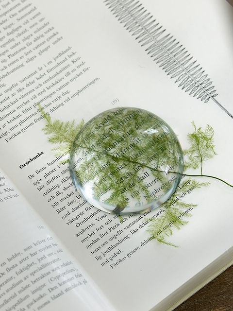 Botany, World, Publication, Paper, Paper product, Book, Sphere,