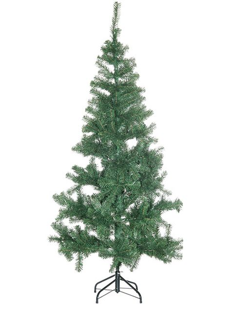 Branch, Leaf, Christmas decoration, Woody plant, Christmas tree, Twig, Evergreen, shortstraw pine, Pine family, Christmas,