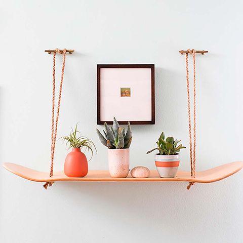 Shelf, Furniture, Shelving, Wall, Flowerpot, Table, Room, Still life photography, Plant, Interior design,