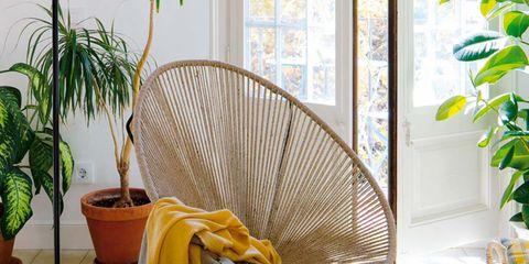 Flowerpot, Table, Interior design, Hardwood, Houseplant, Outdoor furniture, Serveware, Dishware, Coffee table, Vase,