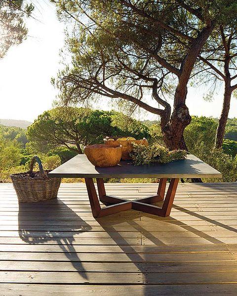 Wood, Branch, Flowerpot, Hardwood, Deck, Trunk, Wood stain, Outdoor table, Wood flooring, Outdoor furniture,
