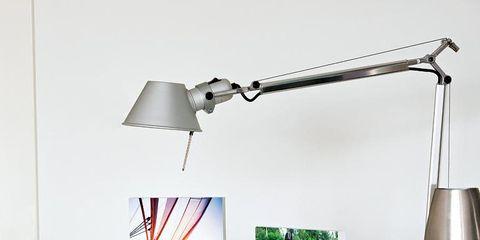 Interior design, Horse, Light fixture, Interior design, Horse tack, Working animal, Horse supplies, Lamp, Lampshade, Mare,