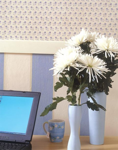 Flowerpot, Flower, Laptop part, Computer hardware, Computer accessory, Petal, Laptop accessory, Laptop, Display device, Vase,