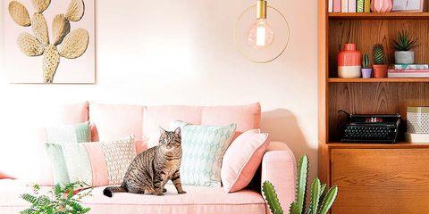 salón en color rosa romántico