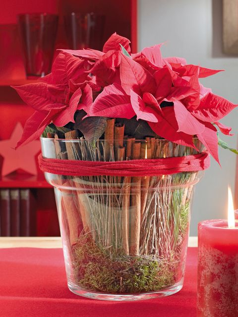 Red, Petal, Interior design, Cut flowers, Candle, Centrepiece, Carmine, Flower Arranging, Wax, Present,