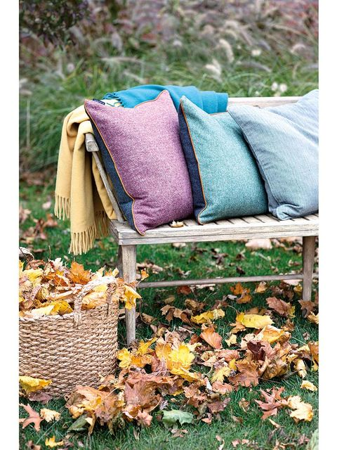 Textile, Leaf, Purple, Deciduous, Teal, Outdoor furniture, Groundcover, Cushion, Throw pillow, Autumn,