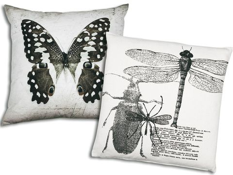 Arthropod, Insect, Pollinator, Invertebrate, White, Style, Wing, Pattern, Paper product, Cushion,