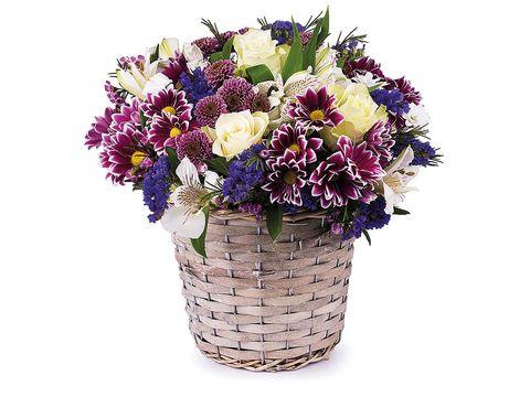 Flower, Bouquet, Cut flowers, Plant, Floristry, Flowerpot, Flower Arranging, Purple, Flowering plant, Violet,