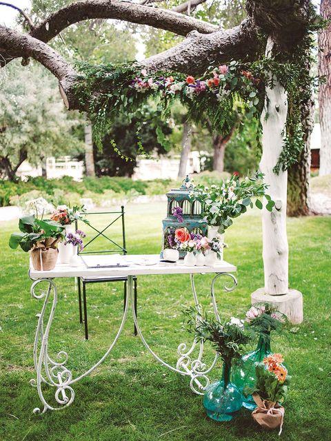 Backyard, Yard, Tree, Arch, Grass, Table, Garden, Architecture, Lawn, Ceremony,