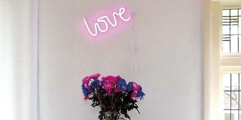 Room, Serveware, Interior design, Purple, Flower, Wall, Lavender, Interior design, Violet, Dishware,