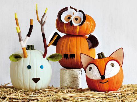 Pumpkin, Jack-o'-lantern, Plant, Calabaza, Owl, Toy,