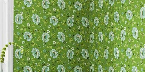 Green, Room, Tablecloth, Interior design, Petal, Interior design, Linens, Teal, Home accessories, Turquoise,