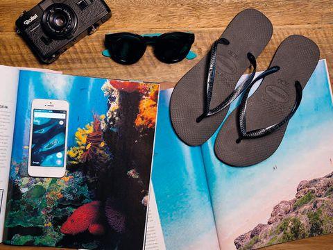 revistas de viajes, cámara de fotos y gafas de sol