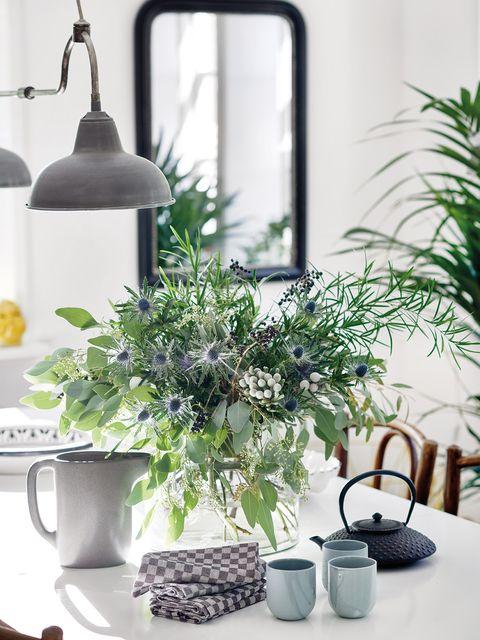 Houseplant, Room, Flowerpot, Plant, Interior design, Herb, Home, Furniture, Table, Living room,