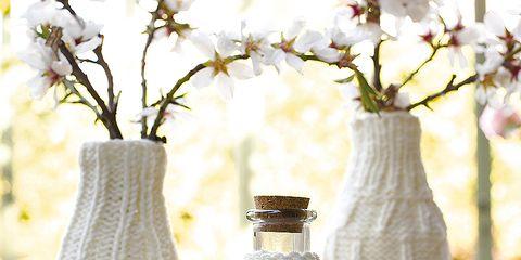 Bottle, Petal, Artifact, Twig, Drinkware, Vase, Cut flowers, Flower Arranging, Glass bottle, Creative arts,