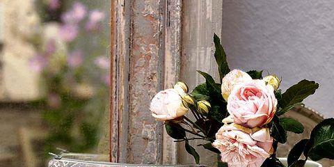 Petal, Peach, Flowering plant, Floral design, Rose family, Artificial flower, Rose order, Cut flowers, Embellishment, Garden roses,