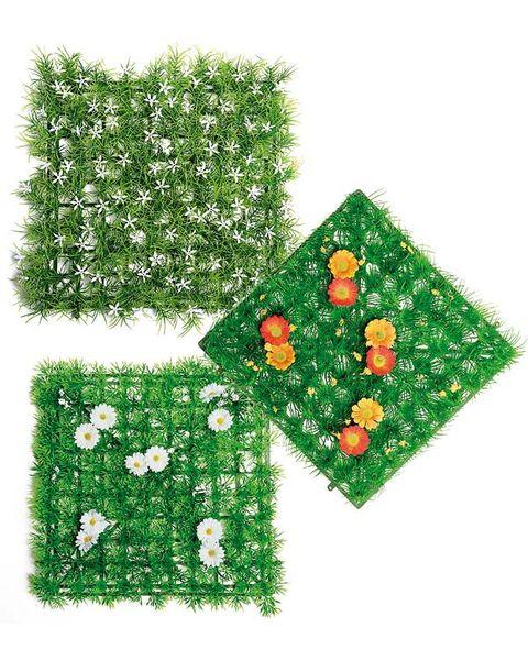 Green, Christmas, Symbol, Christmas tree, Christmas decoration, Holiday, Christmas eve, Conifer, Fir, Holly,