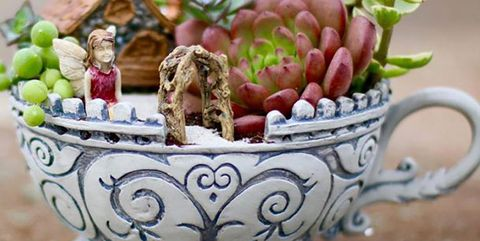 Ceramic, Porcelain, Flowerpot, Tableware, Serveware, Teacup, Cup, Plant, Drinkware, Font,