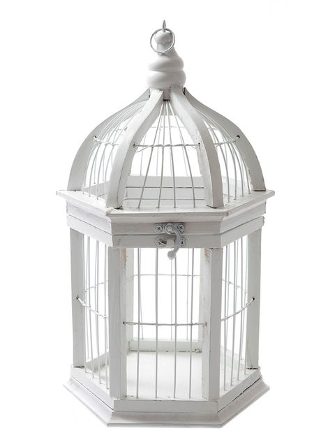 Cage, Pet supply, Light fixture, Dome,