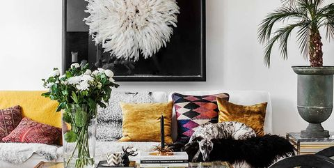 Living room, Furniture, Coffee table, Room, Table, Interior design, Feather, Couch, Wall, studio couch,