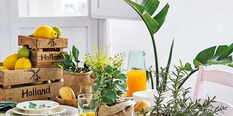 Una mesa con vajilla de motivos botánicos