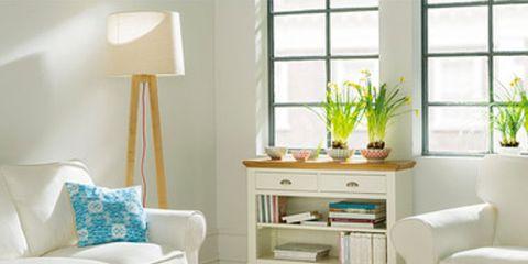 Room, Blue, Interior design, Wood, Green, Floor, Living room, Flooring, Wall, Home,