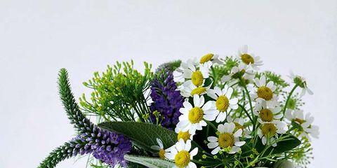 Serveware, Dishware, Petal, Flower, Lavender, Cut flowers, Flowering plant, Bouquet, Floral design, Flower Arranging,