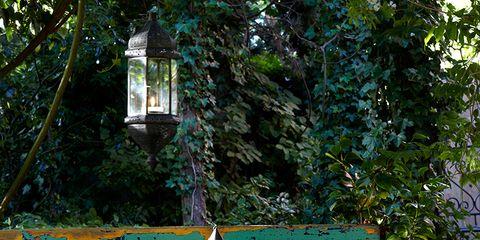 Lighting, Garden, Light fixture, Temple, Yard, Tarpaulin, Idiophone,