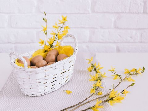 Yellow, Twig, Branch, Cut flowers, Flower, Basket, Plant, Table, Forsythia, Storage basket,
