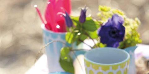 Food, Plate, Purple, Serveware, Dishware, Petal, Dish, Cuisine, Ingredient, Recipe,