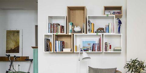 Room, Interior design, Shelf, Shelving, Furniture, Wall, Bicycle wheel, Flowerpot, Home, Interior design,